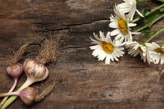 大蒜和春黄菊在老木背景 库存照片