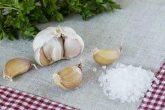 大蒜和海盐头  库存照片