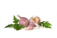 大蒜和荷兰芹 免版税库存照片