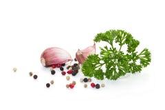 大蒜和香料 免版税库存图片