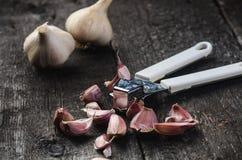大蒜在一张木黑桌上的 与铁大蒜压榨机的新鲜的大蒜电灯泡 背景几何老装饰品纸张葡萄酒 农夫 医学和healt 库存照片
