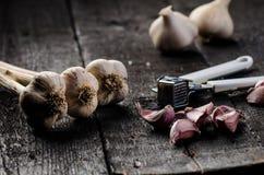 大蒜在一张木黑桌上的 与铁大蒜压榨机的新鲜的大蒜电灯泡 背景几何老装饰品纸张葡萄酒 农夫 医学和healt 库存图片