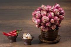大蒜在木桌上的青葱辣椒 免版税库存图片