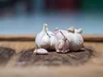 大蒜是一个伟大的草本 免版税库存照片