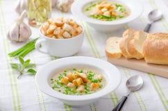 大蒜汤用油煎方型小面包片、春天葱和香葱 免版税库存照片