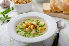 大蒜汤用油煎方型小面包片、春天葱和香葱 免版税库存图片