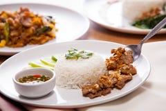 大蒜猪肉米 免版税图库摄影