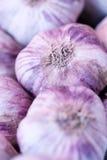 大蒜的不同的类型在食物市场上的 免版税库存图片