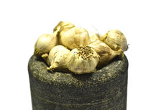 大蒜蔬菜 免版税图库摄影