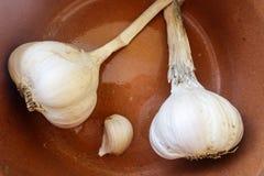大蒜,克利特,希腊 图库摄影
