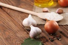 大蒜,海盐,胡椒,向日葵油,在背景的葱 图库摄影