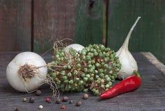 大蒜,炽热胡椒,种子在桌上 库存图片