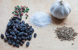 大蒜,胡椒,伏牛花,盐,小茴香 免版税图库摄影