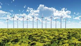 大蓝色云彩沿岸航行东部农厂爱尔兰好的天空天气白色风 库存照片