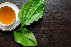 从大蕉的芳香有机自然清凉茶离开 库存图片