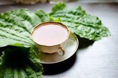 从大蕉的芳香有机自然清凉茶离开 免版税库存图片