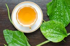 从大蕉的芳香有机自然清凉茶离开 免版税图库摄影