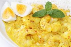 大虾咖喱用鸡蛋 库存照片