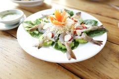 大虾鸡尾酒沙拉 免版税图库摄影