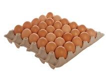 大蛋纸盒 库存图片