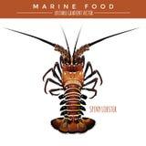 大螯虾 海洋食物 库存图片
