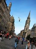 大街在格拉斯哥市,苏格兰 库存照片