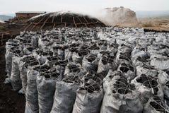 大袋木炭 免版税库存照片