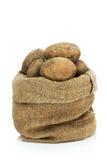 未加工的马铃薯 库存照片