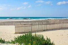 大西洋沙漠海浪 免版税库存图片