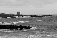 狂放的海岸 库存照片