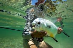 大西洋许可证-用假蝇钓鱼 免版税库存照片