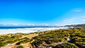 大西洋辗压的波浪到在好望角和Platboom之间的岸里靠岸 免版税库存图片