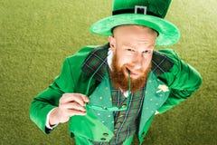 大角度观点的拿着三叶草的绿色服装的有胡子的人塑造了镜片和看照相机 免版税库存照片