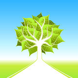 大设计eco结构树 免版税库存照片