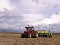 大豆种植 库存图片