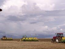 大豆种植 免版税库存图片