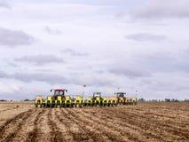 大豆种植 免版税图库摄影
