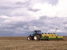 大豆种植 库存照片