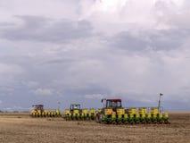大豆种植 图库摄影
