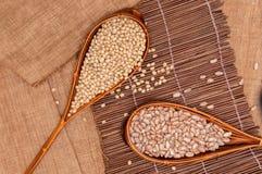 大豆豆和斑豆在背景。 免版税库存照片