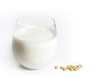 大豆豆和牛奶 库存照片