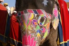 大象。印度,斋浦尔 库存照片