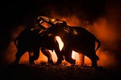 大象争斗 在火背景的大象fighing的剪影或两头大象公牛互动并且沟通,当戏剧无花果时 免版税库存图片