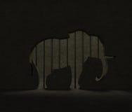 大象保护 动物园笼子 国际天大象的行动在动物园里 免版税图库摄影