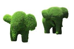 大象修剪的花园 库存图片