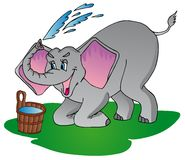 大象做阵雨 免版税库存照片