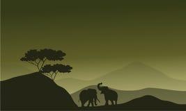 大象剪影在小山的 库存照片
