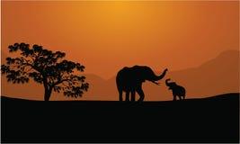 大象剪影在山背景的 免版税库存照片