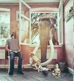 大象和男孩逃命 库存照片