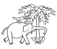 大象和鸟-彩图 免版税库存图片